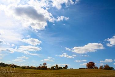 thanksgiving day2012-5