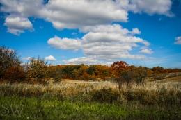 thanksgiving day2012-8