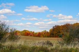 thanksgiving day2012-9