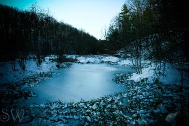 Dark Icy Wetlands