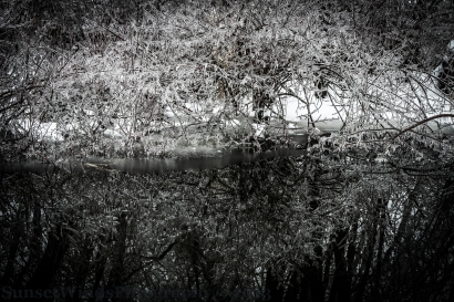 Frozen in Reflection
