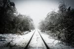 Cold Tracks