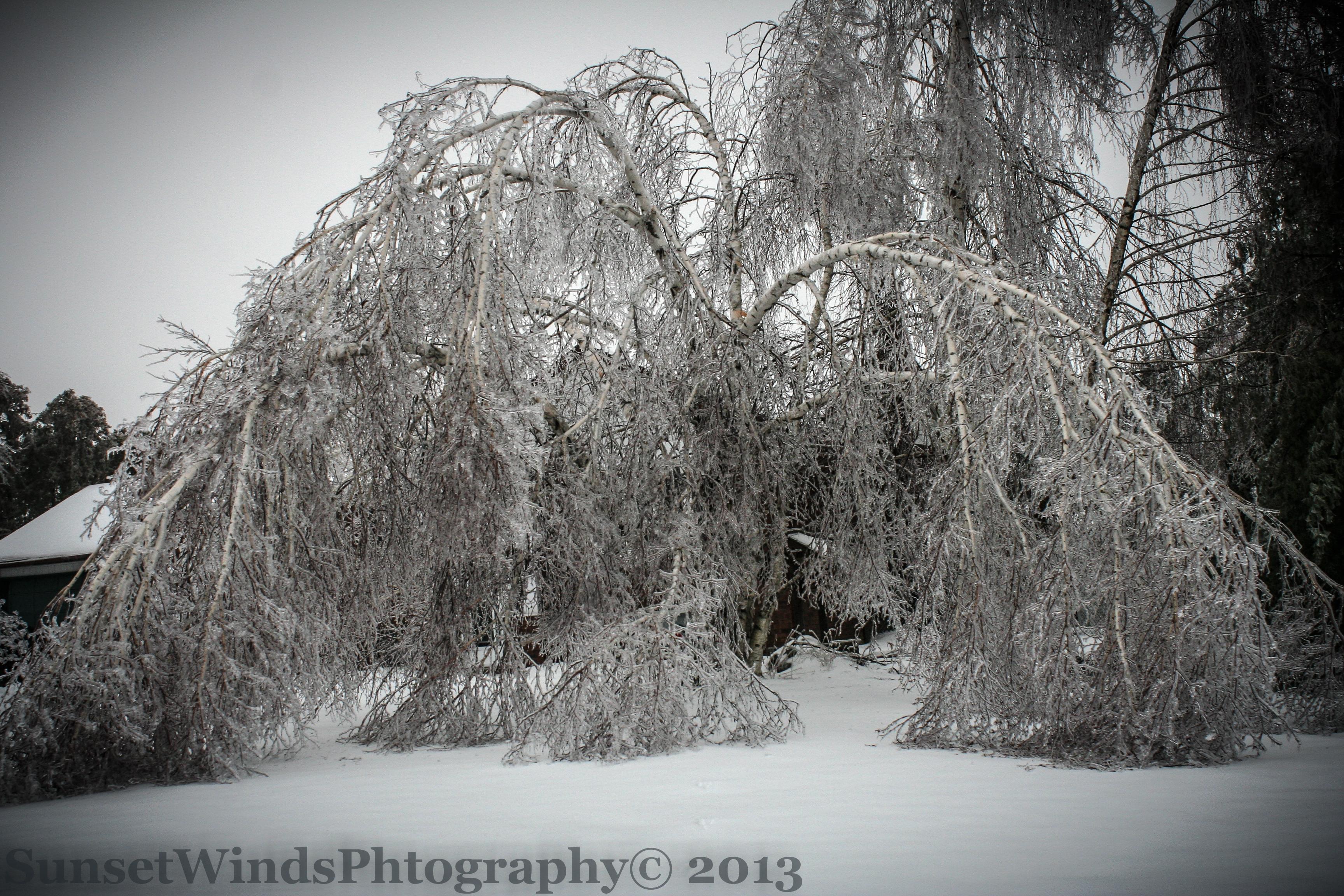 Ice storm the world on ice