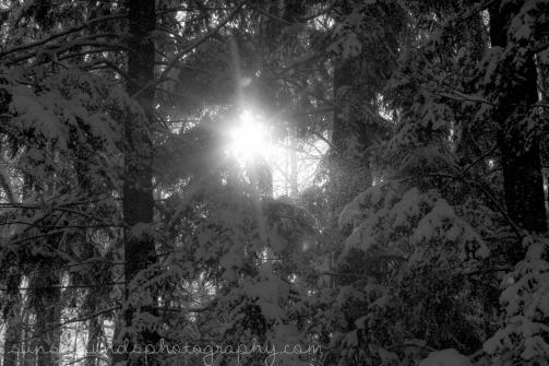 sun breaks through