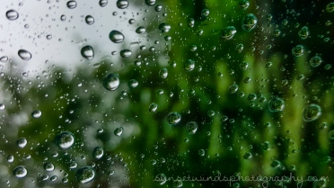 Window Droplets