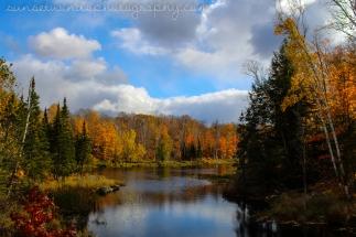 Fresh Autumn Air